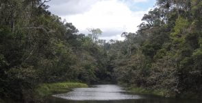 Analamazaotra river