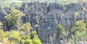 Tsingy lamestone forest